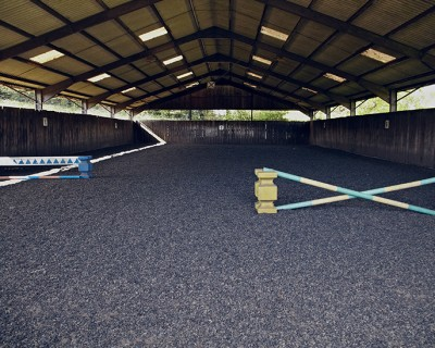 Jumping Lessons (Maximum 2ft)