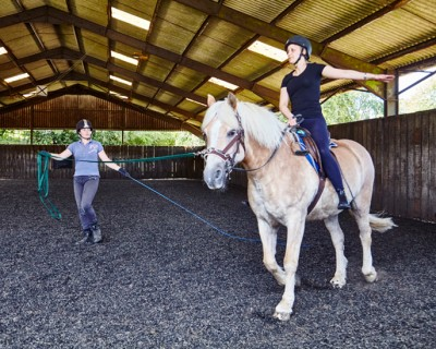 Lunge Lessons