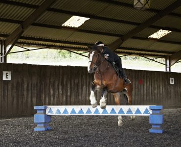LOIS GAMMON'S 6 WEEK JUMPING CLINIC